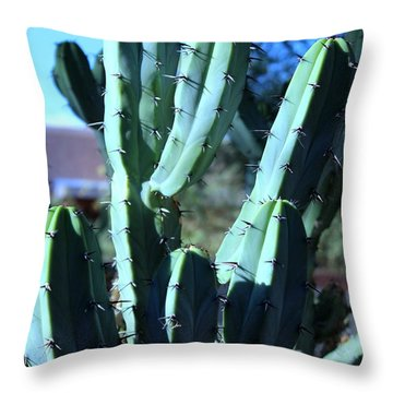 Blue Flame Cactus Throw Pillow by M Diane Bonaparte