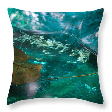 Blue Glass Bird Bath Throw Pillow