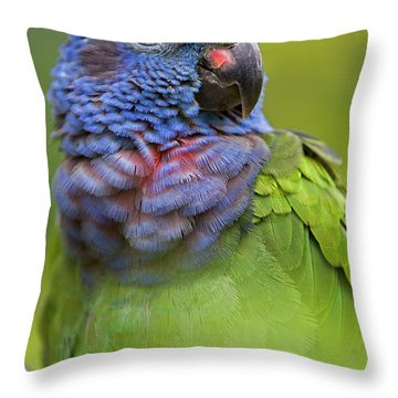 Blue-headed Parrot Pionus Menstruus Throw Pillow by Ingo Arndt