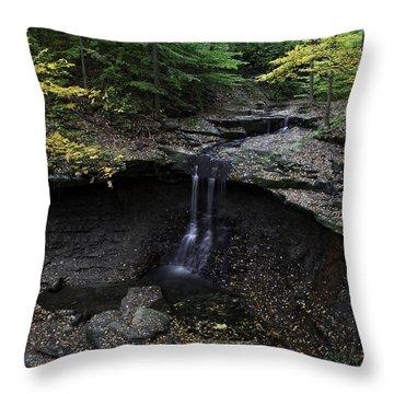 Blue Hen Falls Throw Pillow