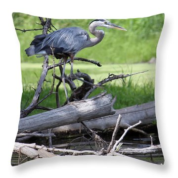 Blue Heron At The Lake Throw Pillow by Debbie Hart