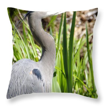 Throw Pillow featuring the photograph Blue Heron by Marilyn Wilson