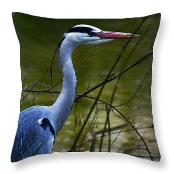 Blue Heron Vondelpark Amsterdam Throw Pillow