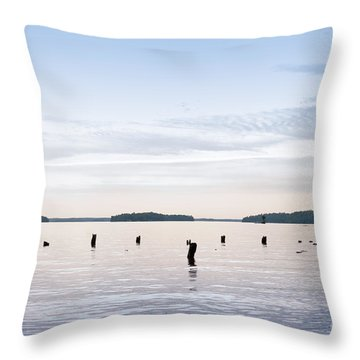 Throw Pillow featuring the photograph Blue Lake Muskoka by Les Palenik
