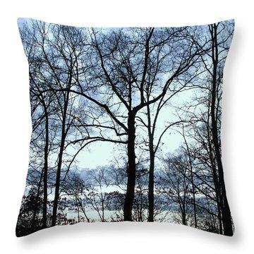 Throw Pillow featuring the photograph Blue Mirage by Pamela Hyde Wilson