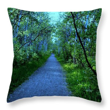 Blue Path Throw Pillow by Johnathan Evans
