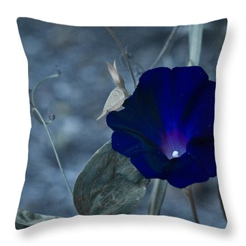 Blue Petunia 2 Throw Pillow