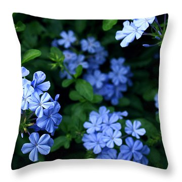 Blue Plumbago Throw Pillow