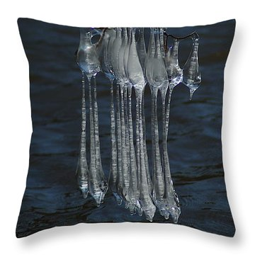 Throw Pillow featuring the photograph Blue Return by Joseph Yarbrough