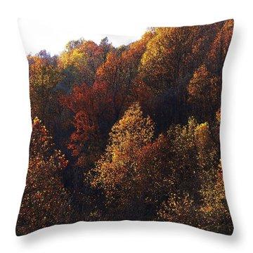Blue Ridge 15 Throw Pillow by Steven Lebron Langston