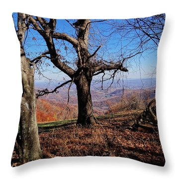 Throw Pillow featuring the photograph Blue Ridge 3 by Steven Lebron Langston