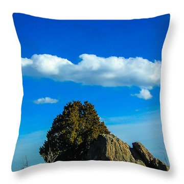 Throw Pillow featuring the photograph Blue Skies by Shannon Harrington