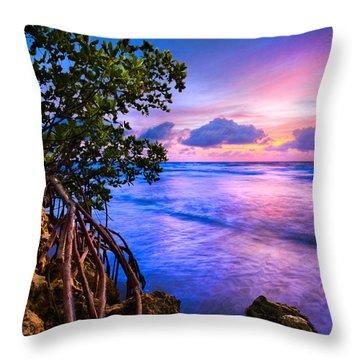 Blue Tide Throw Pillow by Debra and Dave Vanderlaan