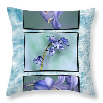 Throw Pillow featuring the photograph Bluebell Triptych by Steve Purnell