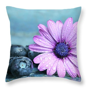 Blueberries And Daisy Throw Pillow by Sandra Cunningham