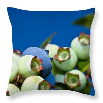Blueberries And Sky Throw Pillow