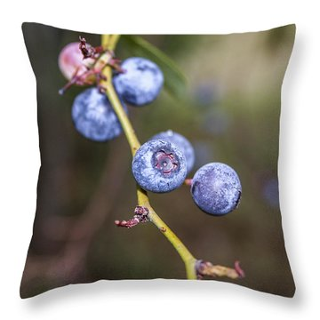 Throw Pillow featuring the photograph Blueberry by Ester  Rogers