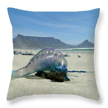Throw Pillow featuring the photograph Bluebottle by Werner Lehmann