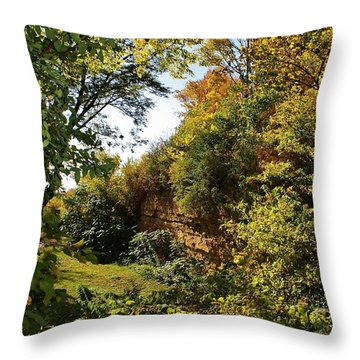 Bluffs Of Sinnissippi Throw Pillow by Bruce Bley