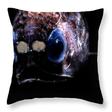 Blunt Face Lampfish Throw Pillow by Dante Fenolio