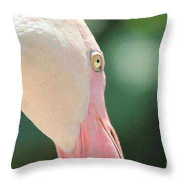 Blushing Flamingo Throw Pillow by Nola Lee Kelsey