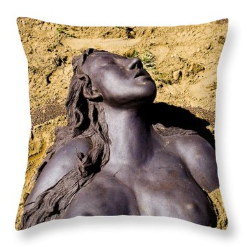 Throw Pillow featuring the photograph Bmwp 2011 by Kristen R Kennedy