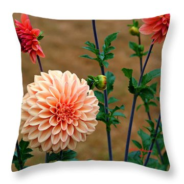 Throw Pillow featuring the photograph Bodaciously Orange by Jeanette C Landstrom