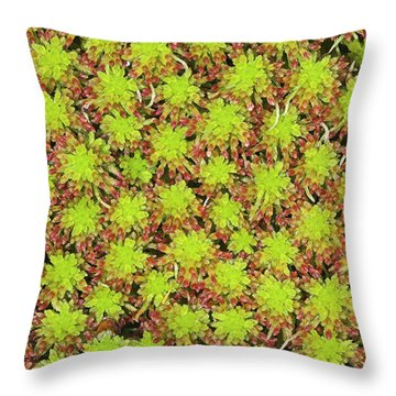 Glen Affric Throw Pillows