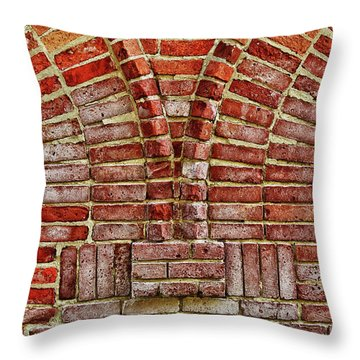 Throw Pillow featuring the photograph Bold Old And Beautiful by Rachel Cohen