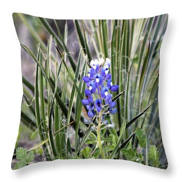 Bonnet Spines Throw Pillow by Alycia Christine