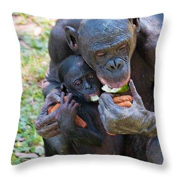 Bonobo 3 Throw Pillow by Kenneth Albin