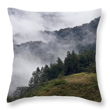 Boquete Highlands Throw Pillow by Heiko Koehrer-Wagner