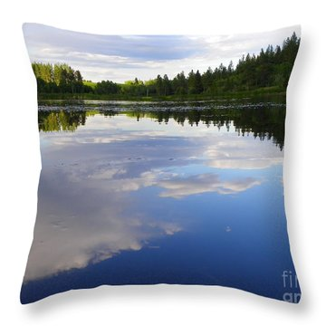 Borrowed Blue Throw Pillow