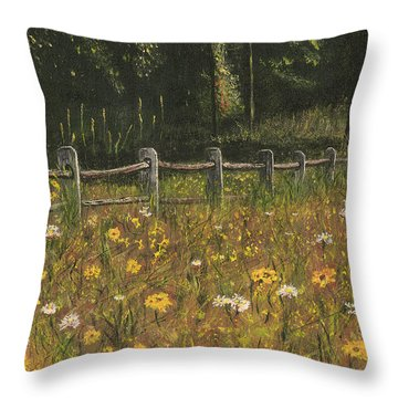 boundary fence Swan Lake NY Throw Pillow by Stuart B Yaeger