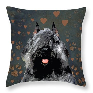 Bouvier Des Flandres Throw Pillow by One Rude Dawg Orcutt