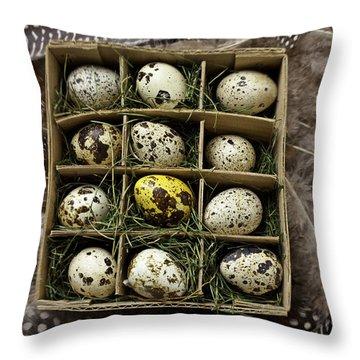 Box Of Quail Eggs Throw Pillow by Garry Gay