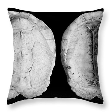 Box Turtle Shell Throw Pillow by Frederic A Reinecke