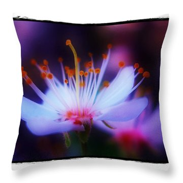 Throw Pillow featuring the photograph Bradford Ballet by Judi Bagwell