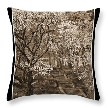 Branchbrook Park In Sepia Throw Pillow