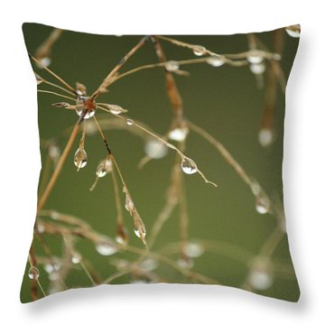 Branches Of Dew Throw Pillow by Neal Eslinger