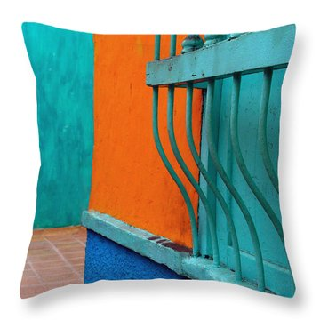 Break Out Throw Pillow by Skip Hunt