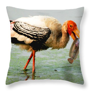 Throw Pillow featuring the photograph Breakfast by Pravine Chester