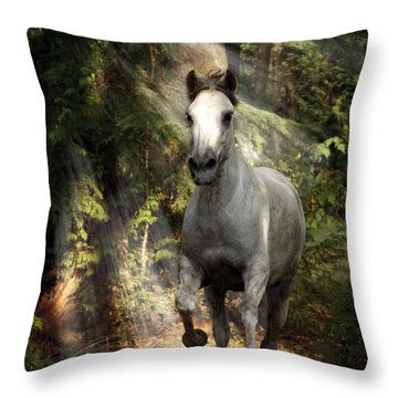 Breaking Dawn Gallop Throw Pillow by Wes and Dotty Weber