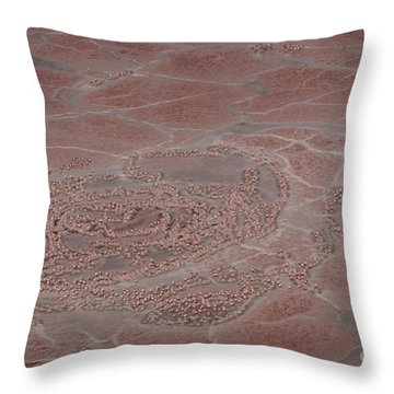 Breeding Colonies Of Flamingos Throw Pillow by Gregory G. Dimijian