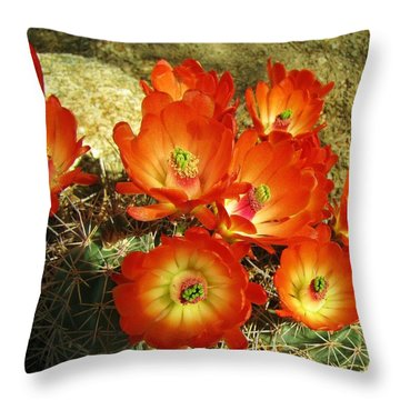 Bright And Beautiful Throw Pillow by FeVa  Fotos