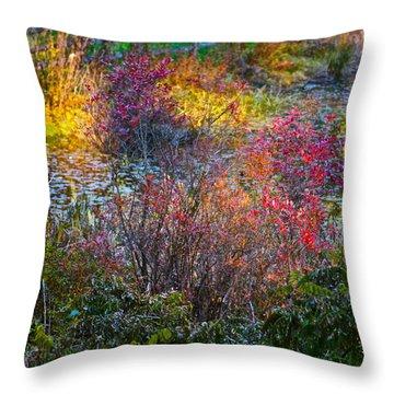 Bright Autumn Light Throw Pillow