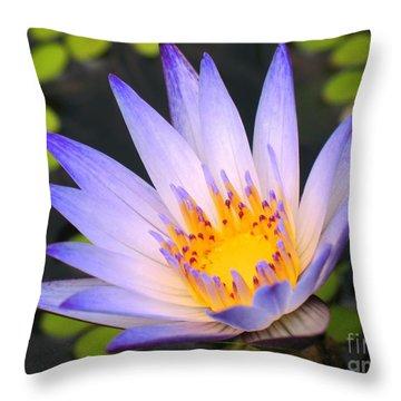Bright Blue Water Lily Throw Pillow