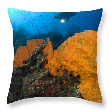 Bright Orange Sponge With Diver Throw Pillow by Steve Jones