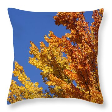 Throw Pillow featuring the photograph Brilliant Fall Color And Deep Blue Sky by Mick Anderson