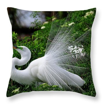 Brilliant Feathers Throw Pillow